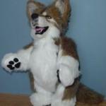 Stuffed Wolf Pattern