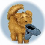 dog carrying moccasin slippers