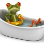 frog having a fizzy bath