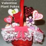 Heart Plant Pokes