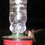 recycled homemade hummingbird feeder