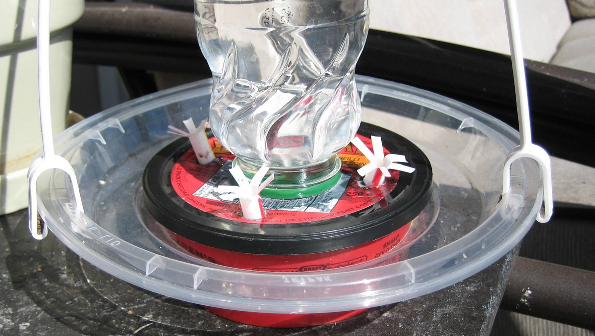 take-out lid makes a perch for hummingbird feeder