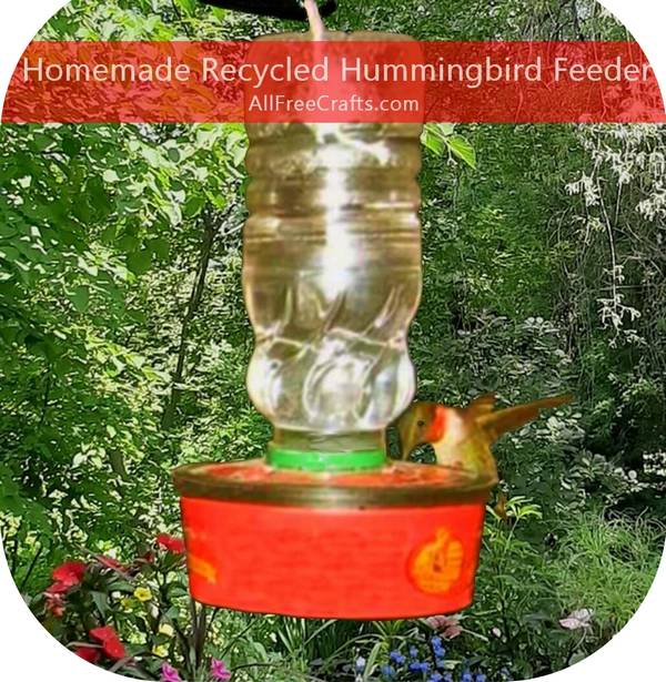 hummingbird feeding from a homemade recycled feeder