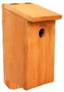 woodpecker house