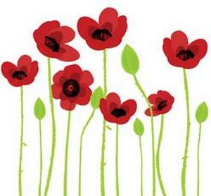 artistic poppies