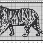 Tiger Filet