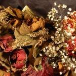 Air Dry Flowers