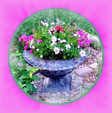 center of herb circle wheel