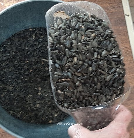 recycled scoop filled with black oil sunflower seeds