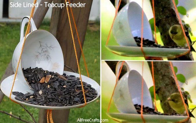 sideways teacup bird feeder