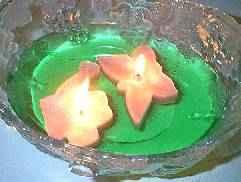 floating-candle2 (5K)