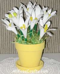 small pot of paper lilies