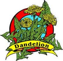 dandeliontops (11K)