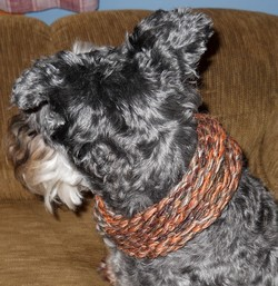 Dog Cowl Knitting Pattern : Loom Knitted Dog Cowl - Free Pattern