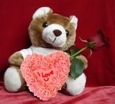 teddy rose heart
